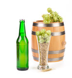 Beer with hop and barrel isolated Stock Image