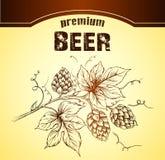 Beer with hop. For labels of wine for bottle cask barrel ceg Royalty Free Illustration