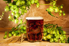 Beer and hop on sacking. Still-life stock images