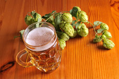 Beer and hops Royalty Free Stock Photography