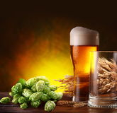 Beer and hops. royalty free stock image