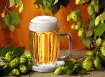 Beer and hops stock images