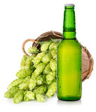Beer and hops in basket Royalty Free Stock Image