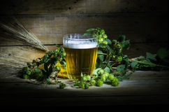 Beer, hops and ears Stock Photography