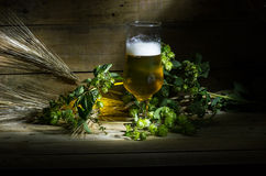 Beer, hops and ears Stock Photos