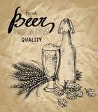 Beer, hops, glass, bottle, ears vector illustration