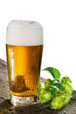 Beer and hops Royalty Free Stock Images