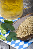 Beer, hops and grain, brewing ingredients Royalty Free Stock Photography
