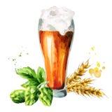 Beer, hops, malt set. Watercolor Stock Photo