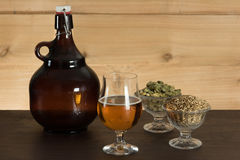Beer, hops, malts and a large growler Royalty Free Stock Photo