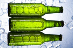Beer is in ice. Beer collection, glass in studio Stock Image