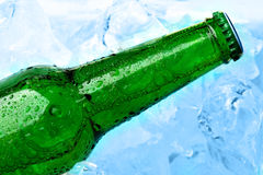 Beer and ice Royalty Free Stock Image