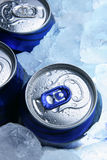 Beer and ice Royalty Free Stock Images