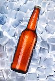 Beer and ice around Royalty Free Stock Images