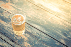Beer with ice in glass Royalty Free Stock Photo