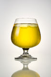 Beer and ice in glass with reflection Stock Photos