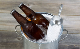 Beer on Ice for the Season Stock Images