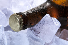 Beer and ice. Wet bottle of beer on the ice Stock Photo