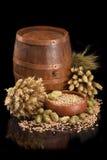Beer ingredients Stock Image