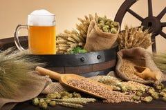 Beer ingredients Royalty Free Stock Images