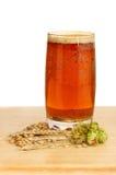 Beer and ingredients Royalty Free Stock Image