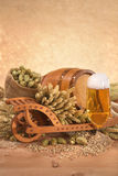 Beer ingredients Stock Image