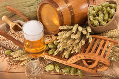 Beer ingredients Royalty Free Stock Images