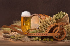 Beer ingredients Royalty Free Stock Photos