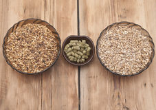 Beer ingredients, hops and malt stock photography