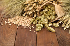 Beer ingredients Royalty Free Stock Photo