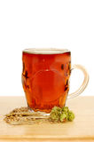 Beer and ingredients Stock Photography