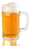 Beer. Isolated Royalty Free Stock Image