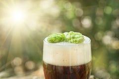 Beer, kvass malt hops. Large glass dark beer, kvass, malt, hops, barley ears standing on an old wooden table dyeing, natural background Royalty Free Stock Photography