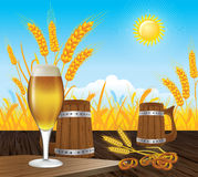 Beer landscape Royalty Free Stock Photos