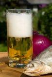 beer life still 库存照片