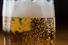 Beer with lights Royalty Free Stock Photo