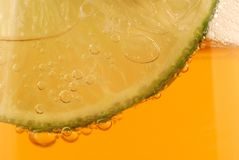 Beer with lime Stock Photography