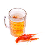 Beer with lobster Stock Images