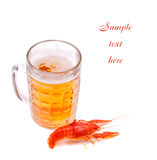 Beer with lobster Royalty Free Stock Photography