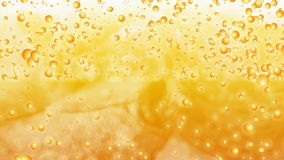 Beer. Looping Video Clip of Beer Bubbles moving across the frame stock footage