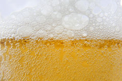 Beer macro foam and bubbles Royalty Free Stock Photos