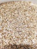 Malt. Beer malt close-up Stock Photo