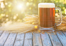 Beer malt hops, background. Large glass of dark beer, malt, hops, barley ears standing on an old wooden table dyeing, natural background Stock Image