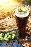 Beer malt hops, background. Large glass of dark beer, malt, hops, barley ears standing on an old wooden table dyeing, natural background Stock Photography