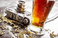 Beer, malt, hops. A glass of beer, malt and the camera on the table Stock Photos