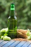 Beer malt hops. Green bottle of beer, hops, malt, barley ears standing on an old table on natural background Stock Image