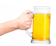 Beer with man hand making toast. Isolated on a white background Royalty Free Stock Photography