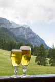 Cold beer in two glasses Royalty Free Stock Image