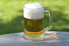 Beer mug. Stock Image