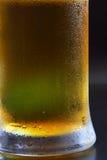 beer mug στοκ εικόνα με δικαίωμα ελεύθερης χρήσης